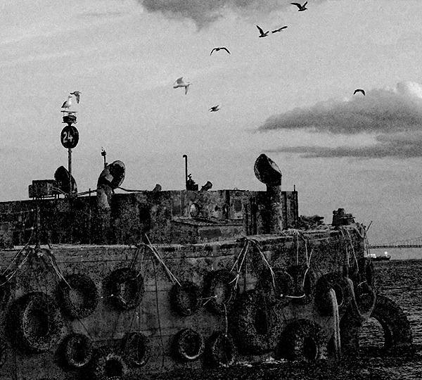 Sail Away. Photo by Alina Oswald.