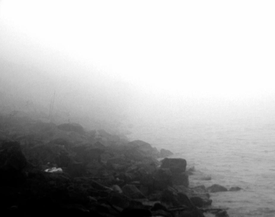 Fog over Mississippi, NOLA. Photo by Alina Oswald.