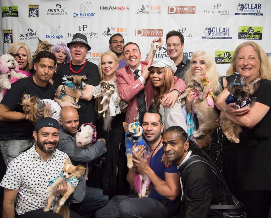Urban Animals event at D Pet Hotel in NYC.