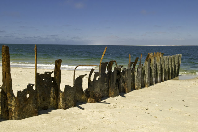 Sylt Groynes (Buhnen), Germany. Photo by Alina Oswald. All Rights Reserved.