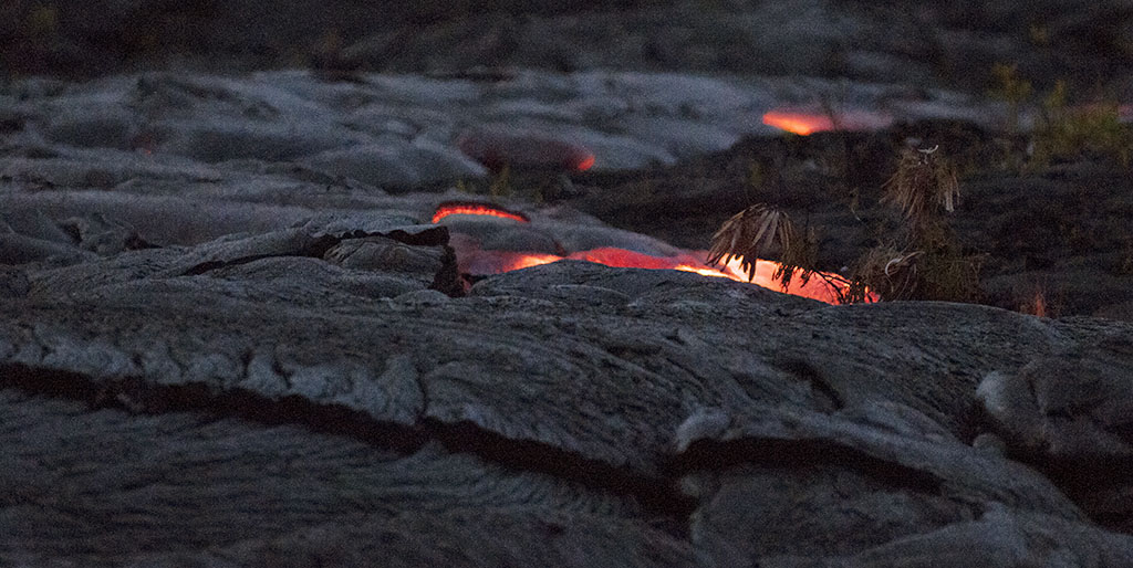 Slow motion live lava backlights a tree branch. Volcano National Park. Big Island of Hawaii. Photo by Alina Oswald.