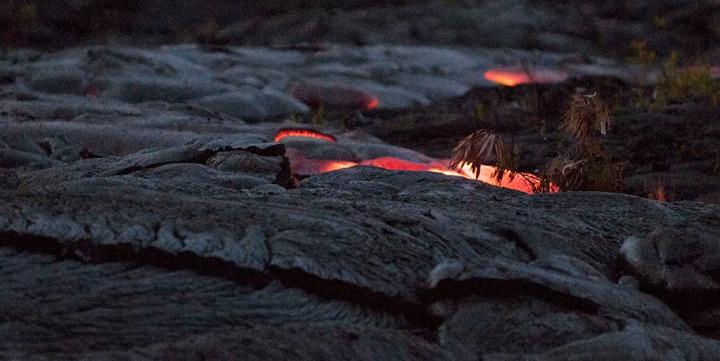 Slow motion live lava backlights a tree branch. Volcano National Park. Big Island of Hawaii. Photo by Alina Oswald.