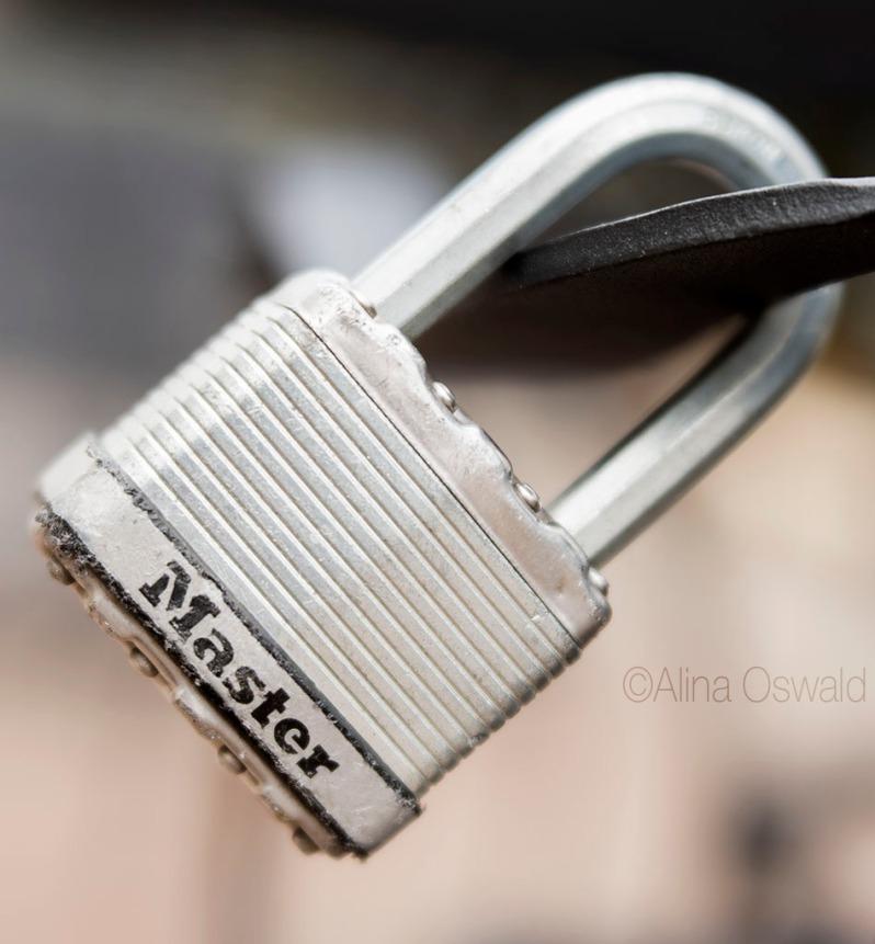 Velvet Lock. Lensbaby Velvet Photography by Alina Oswald. All Rights Reserved.
