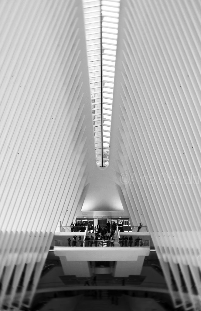 The Oculus in velvet b&w. Lensbaby Velvet Photography by Alina Oswald.