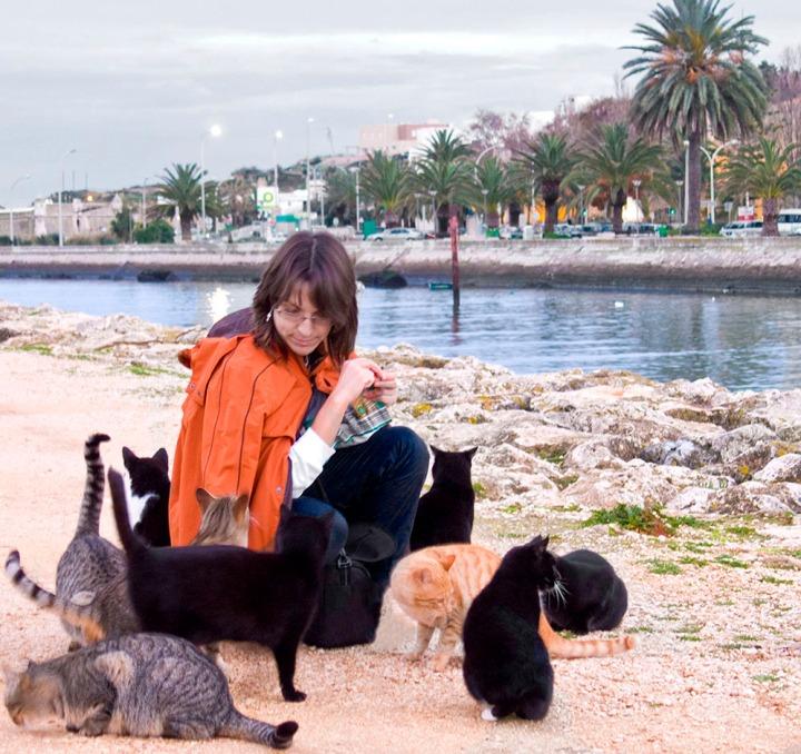 AlinaCatsPortugal07-08_lr