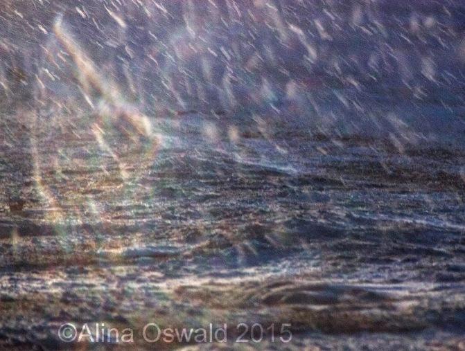 Juno blizzard 2015, NYC area. Photo by Alina Oswald.