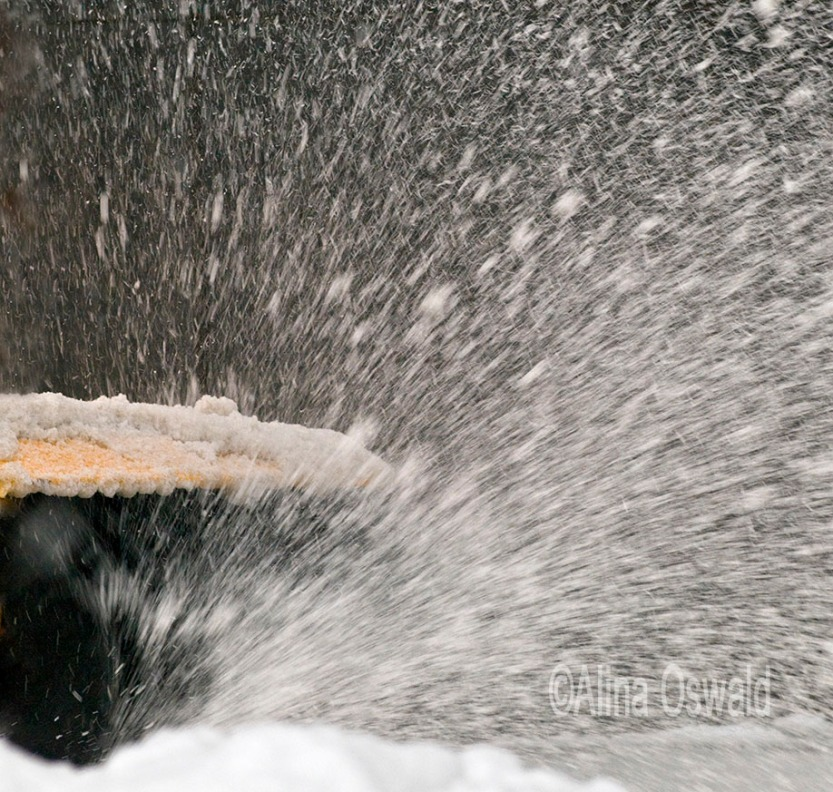 Winter blizzard in NYC Metro Area