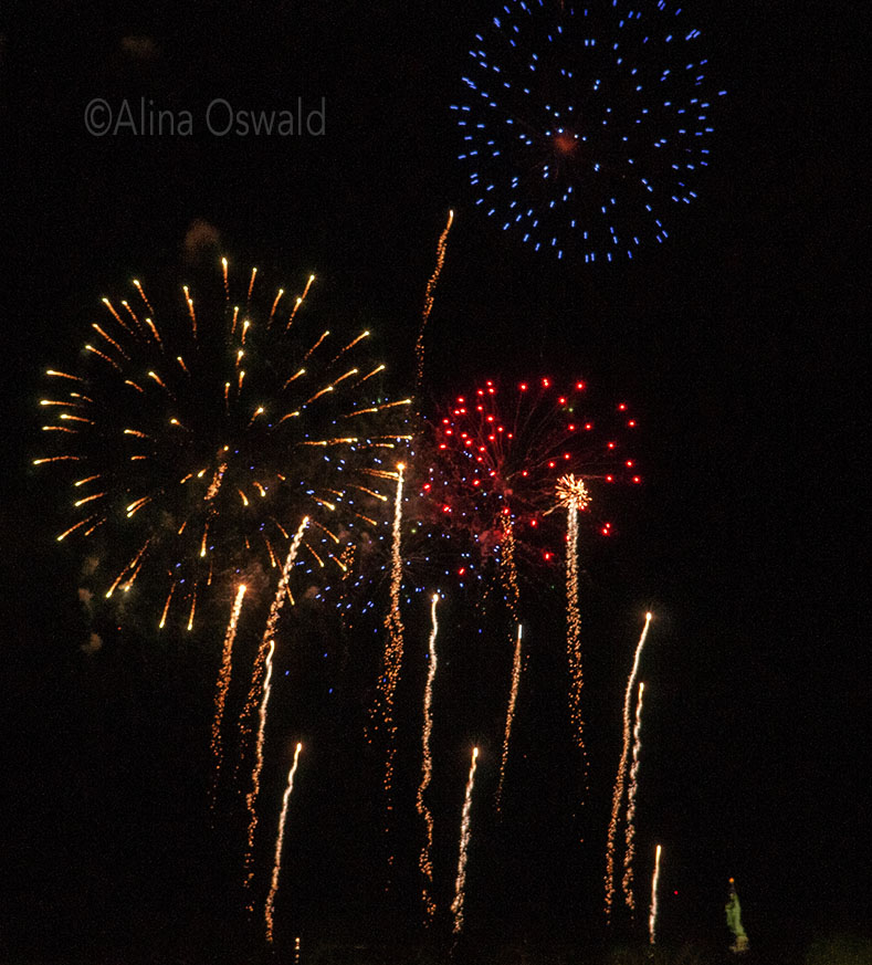 Fourth of July and Lady Liberty. Photo by Alina Oswald. All Rights Reserved.