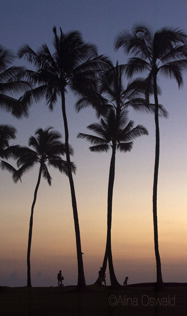 Kauai, Hawaii, Nov-Dec 2013