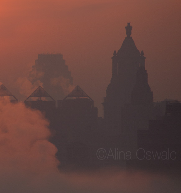 Golden hour fog over the city. Photo by Alina Oswald.