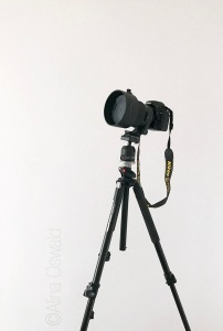 Sigma 105mm f/1.4 for Nikon on tripod. Photo by Alina Oswald. All Rights Reserved.
