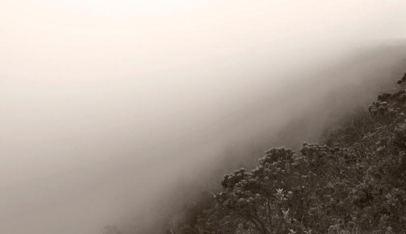 Fog. ©Alina Oswald.