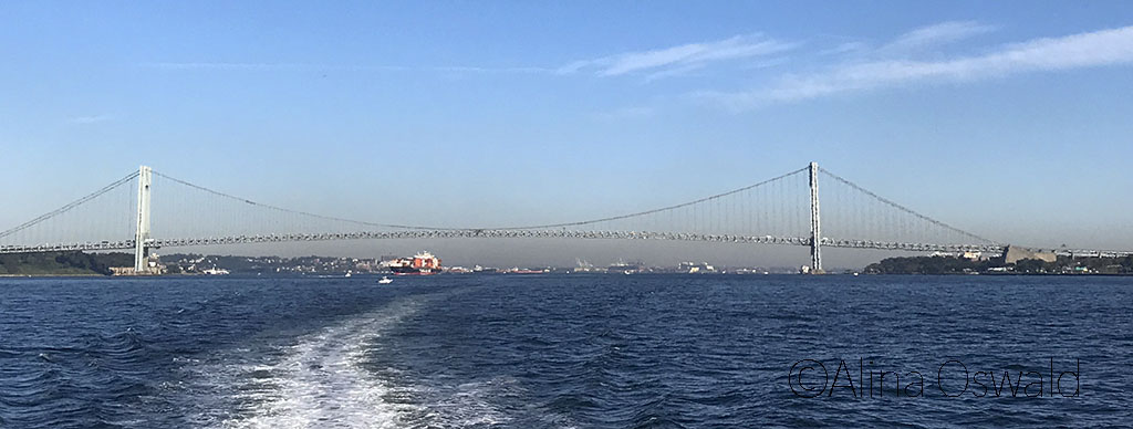 Passing under Verrazano Bridge, crossing into NY Harbor. Photo by Alina Oswald.