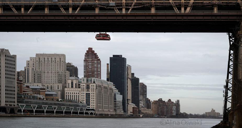 Views of NYC and Roosevelt Island gondola from Roosevelt Island, NYC. Photo by Alina Oswald.