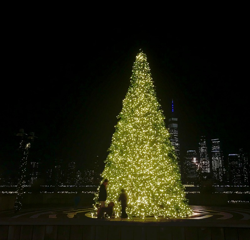 Christmas tree lights on Jersey City pier at night. In the background, Freedom Tower and Lower Manhattan. ©Alina Oswald. All Rights Reserved.